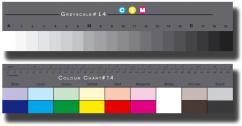 Danes Picta Комплект сива и цветна скала - голям размер BST14
